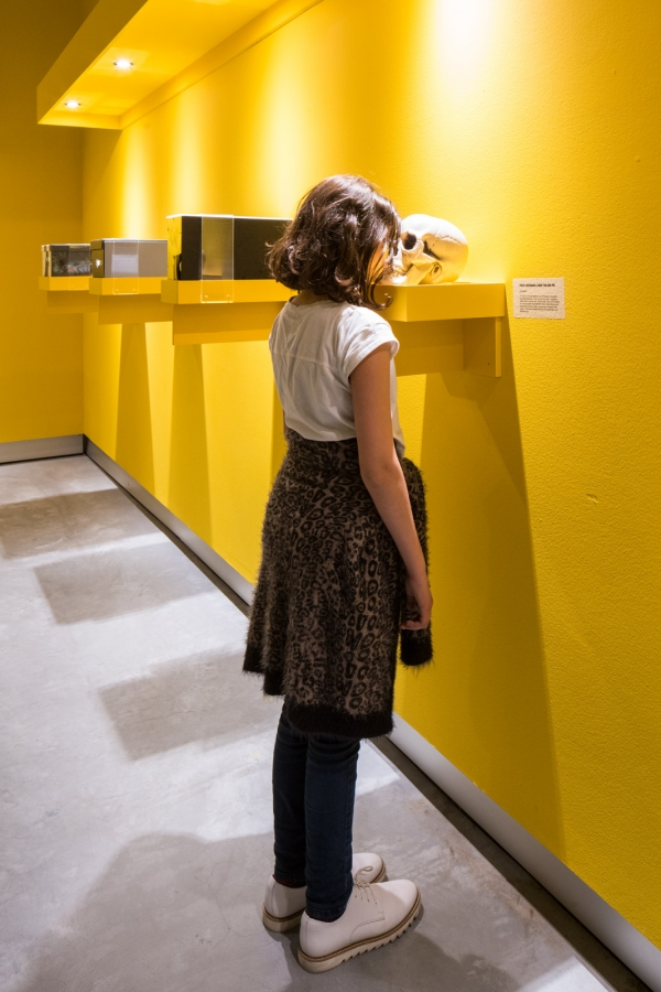 Museum Of The Image, Breda   expo shots for 'Van Gogh Mini's'